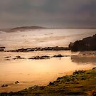 Stormy Day At Gallows Beach by wallarooimages