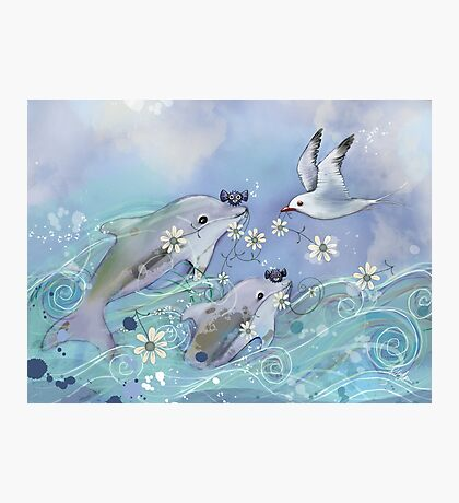 Dolphin Gifts Photographic Print