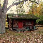 Little Log Cabin Behind Ringwood Manor by Jane Neill-Hancock