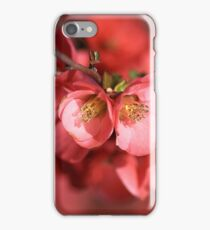 Flowering Quince iPhone Case/Skin
