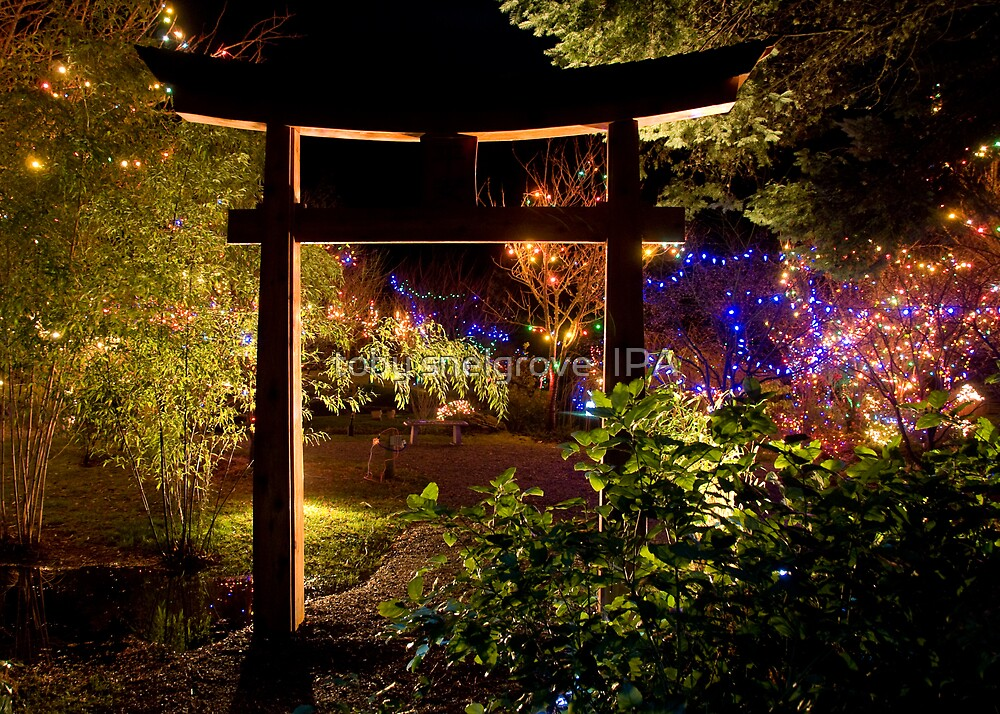 Japanese Garden Christmas Lights Mayne Island BC by toby