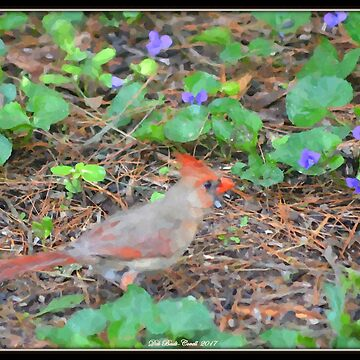 Female Cardinal in the Spring by Badtgirl