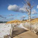 A Winter's Day at the Beach by photobear