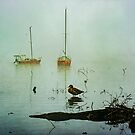 Yachts on a Misty Morning by Stuart Row