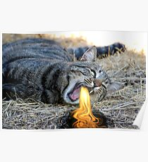 My Cat Breathes Fire! Poster