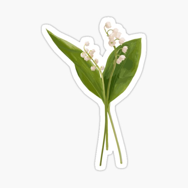 Lily of the valley in vector Sticker