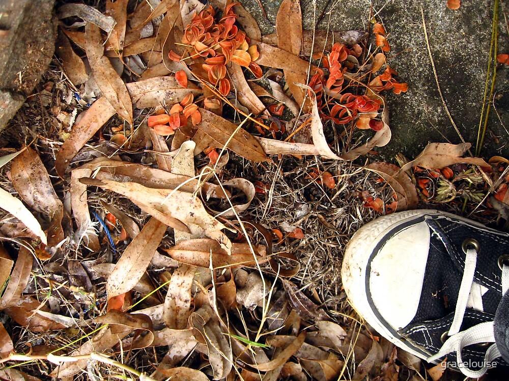 Autumn Shoes by gracelouise