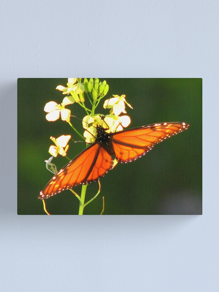 Alternate view of Any Left ? Canvas Print