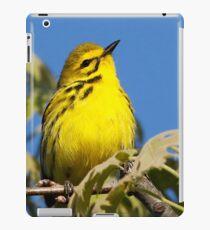 prairie warbler iPad Case/Skin