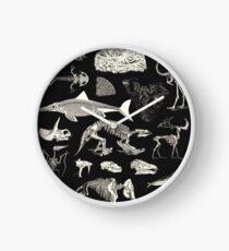 Paleontology Illustration Clock
