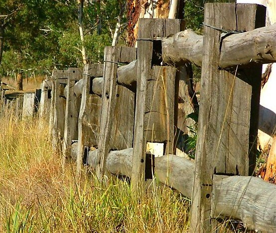 Post & Rail Fence by pedroski
