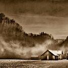 Winter in sepia by Kurt  Tutschek