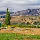 On the Road - Arrowtown to Wanaka, New Zealand by Elaine Teague