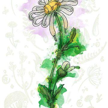 Daisy Lace by itadakki