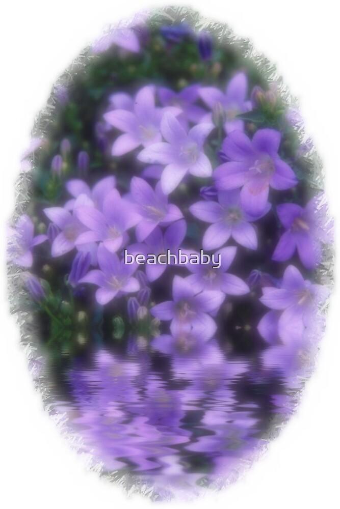 soft flowers by beachbaby