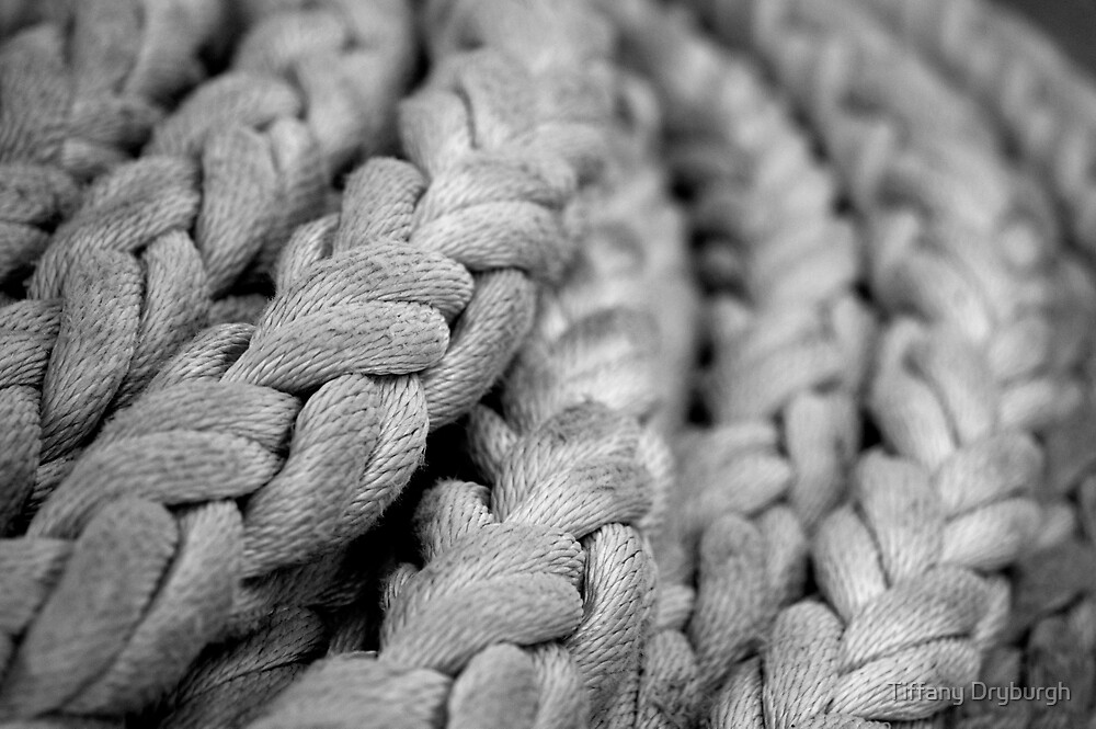 Coiled by Tiffany Dryburgh