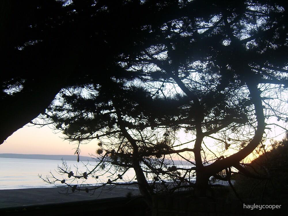 Bournemouth Beach Sunset by hayleycooper