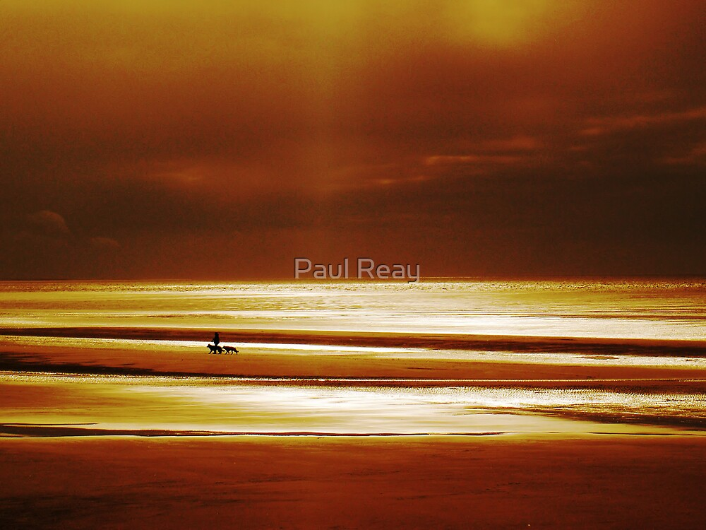 Tranquility by Paul Reay