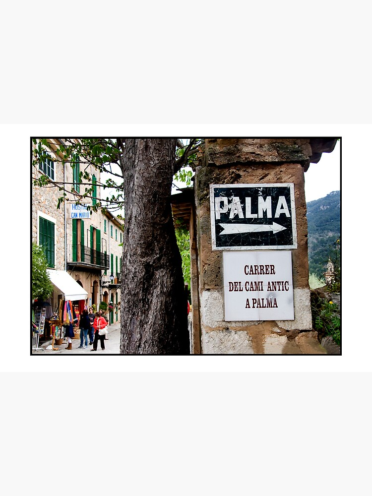 This way to Palma by rogues70