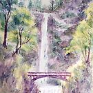 Awesome Falls by Carolyn Bishop