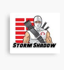 Storm Shadow Canvas Print
