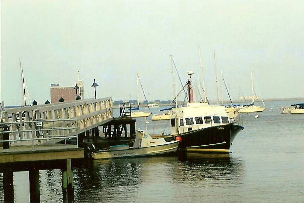 Boston Harbour by Emilyyy