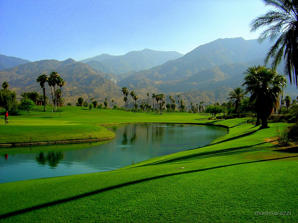 Palm Springs view of golf course by mommarazzi