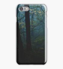 Moonglade iPhone Case/Skin