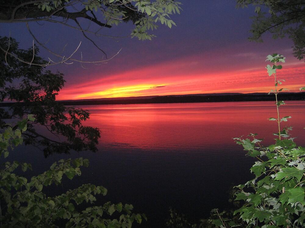 Saratoga Sunset by Jendehe
