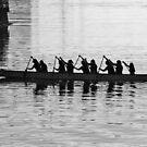 Row, row row the boat by awefaul