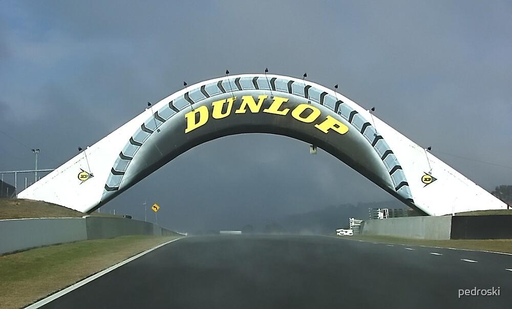 Dunlop Bridge Mt Panorama by pedroski