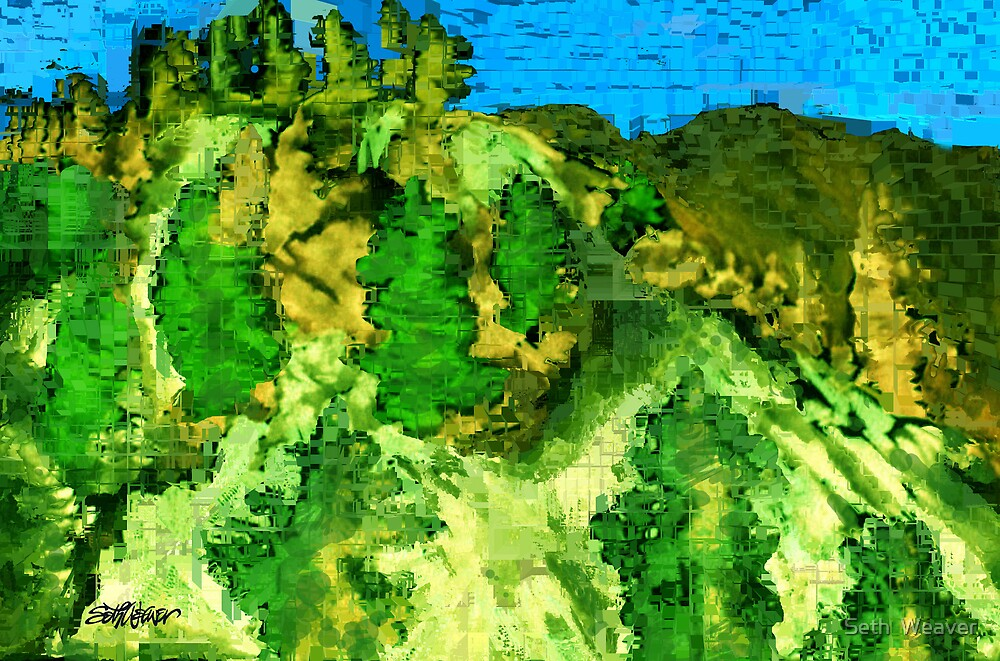 Mesa Verde by Seth  Weaver