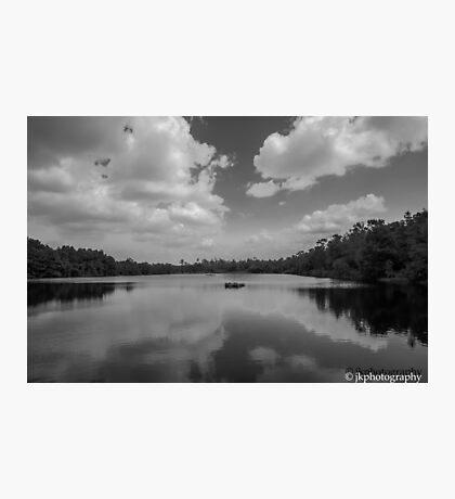 Gator Pond  Photographic Print