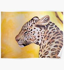 Leopard In The Sun Oil Study Poster
