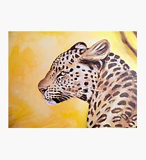 Leopard In The Sun Oil Study Photographic Print