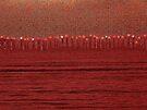 Sea of Compassion by ArtOfE