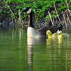 Mom Plus Two  by lorilee