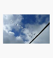 Sparkling Bubbles In The Sky - Raindrops on Web - NZ Photographic Print