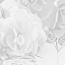 Begonias On Tray - Monochrome by Sandra Foster