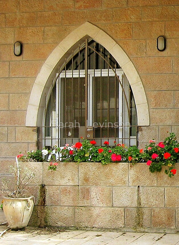 arched window and geraniums by Sarah  Levinson