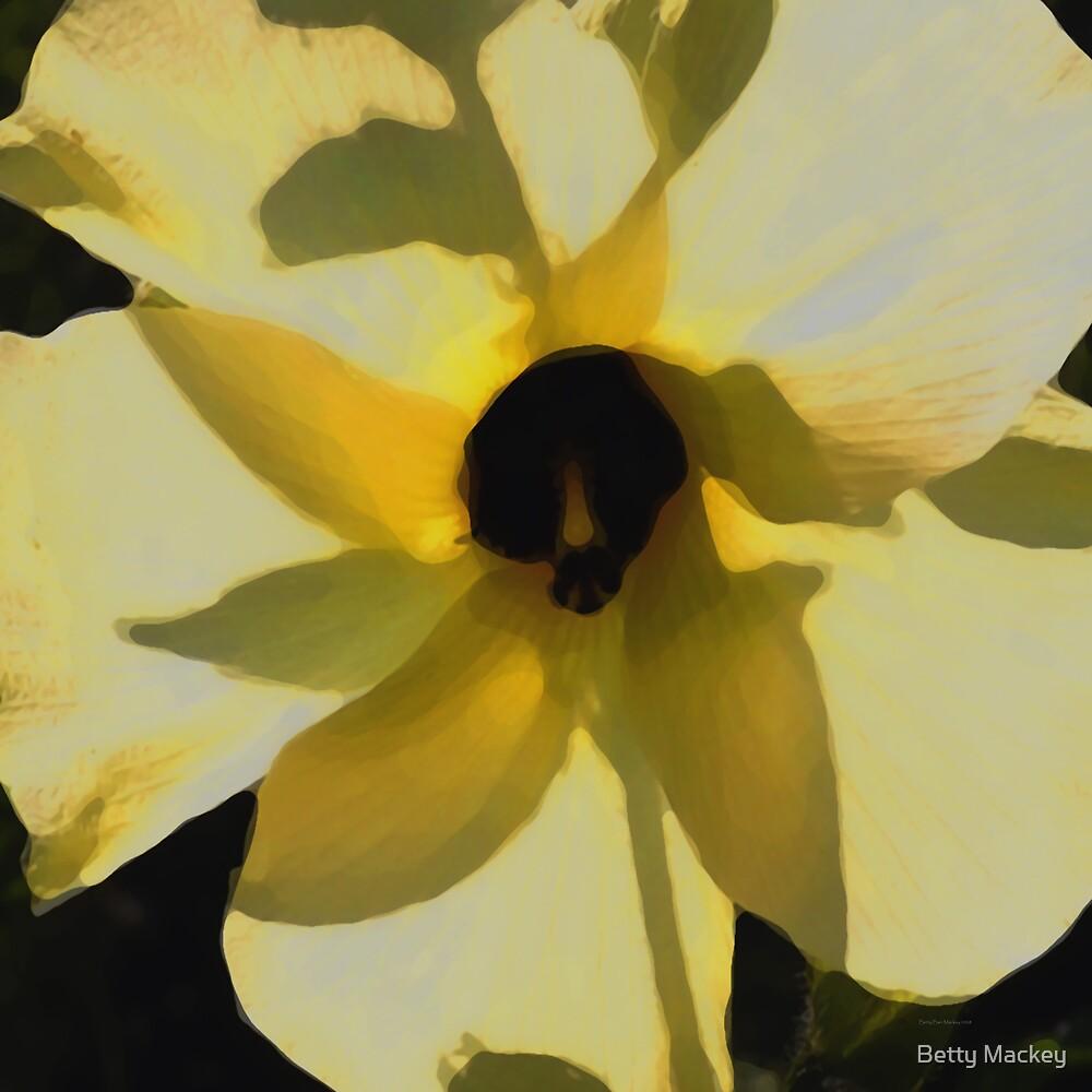 Mallow in Sunshine by Betty Mackey