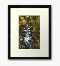 Brush Creek Framed Print