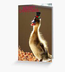 Merry Christmas - Duckling - NZ Greeting Card
