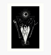 The Forest At Night Art Print