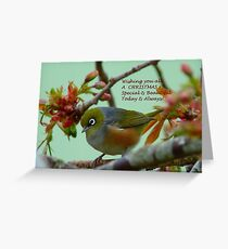 Special & Beautiful - Christmas Greeting Card - NZ Greeting Card