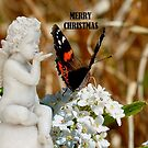 Merry Christmas - Angel & Butterfly - NZ by AndreaEL