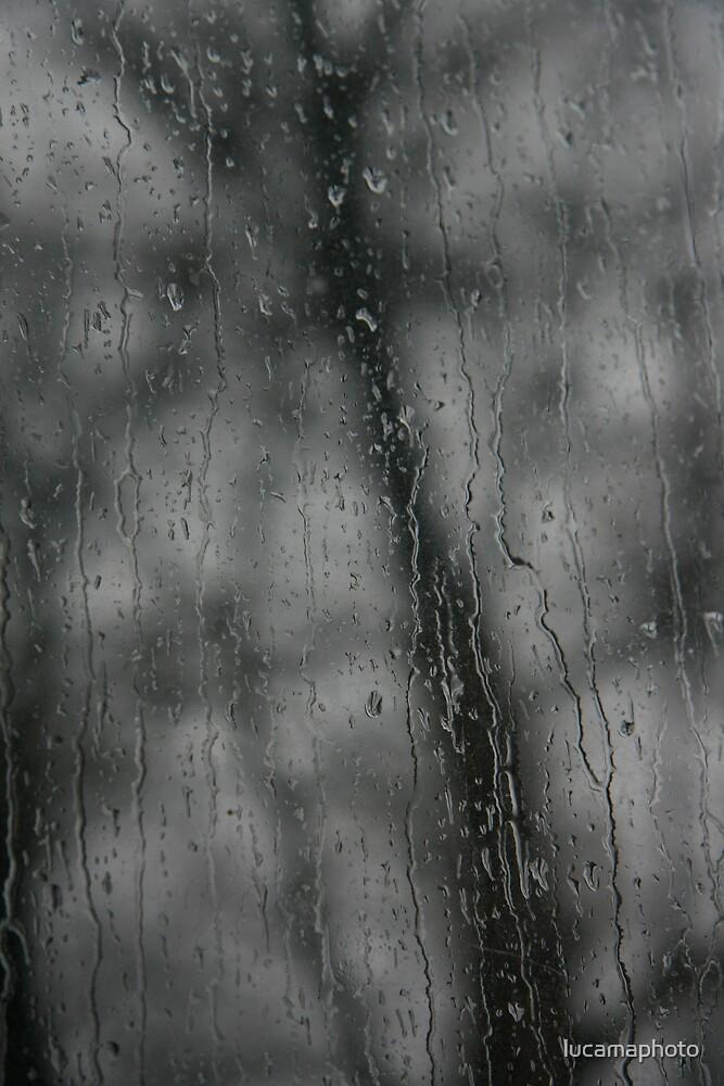 Weatherstruck by lucamaphoto