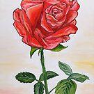 A touch of romance by Loredana Messina