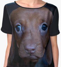Daschound Puppy Chiffon Top