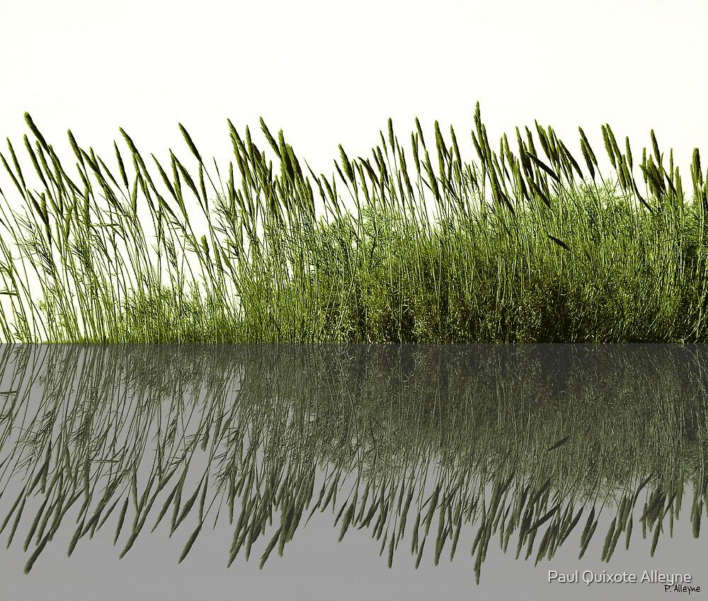 GREEN REFLECTIONS by Paul Quixote Alleyne